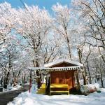 Griekenland in de Sneeuw